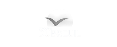 groupe dubreuil logo 2