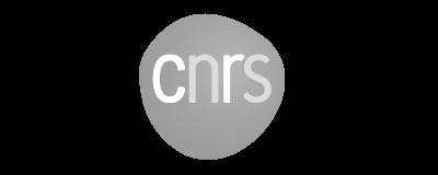 logo cnrs 3